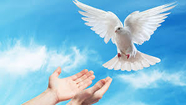 Novena to the holy spirit for the seven gifts. Day six Wednesday, seventh week of Easter.